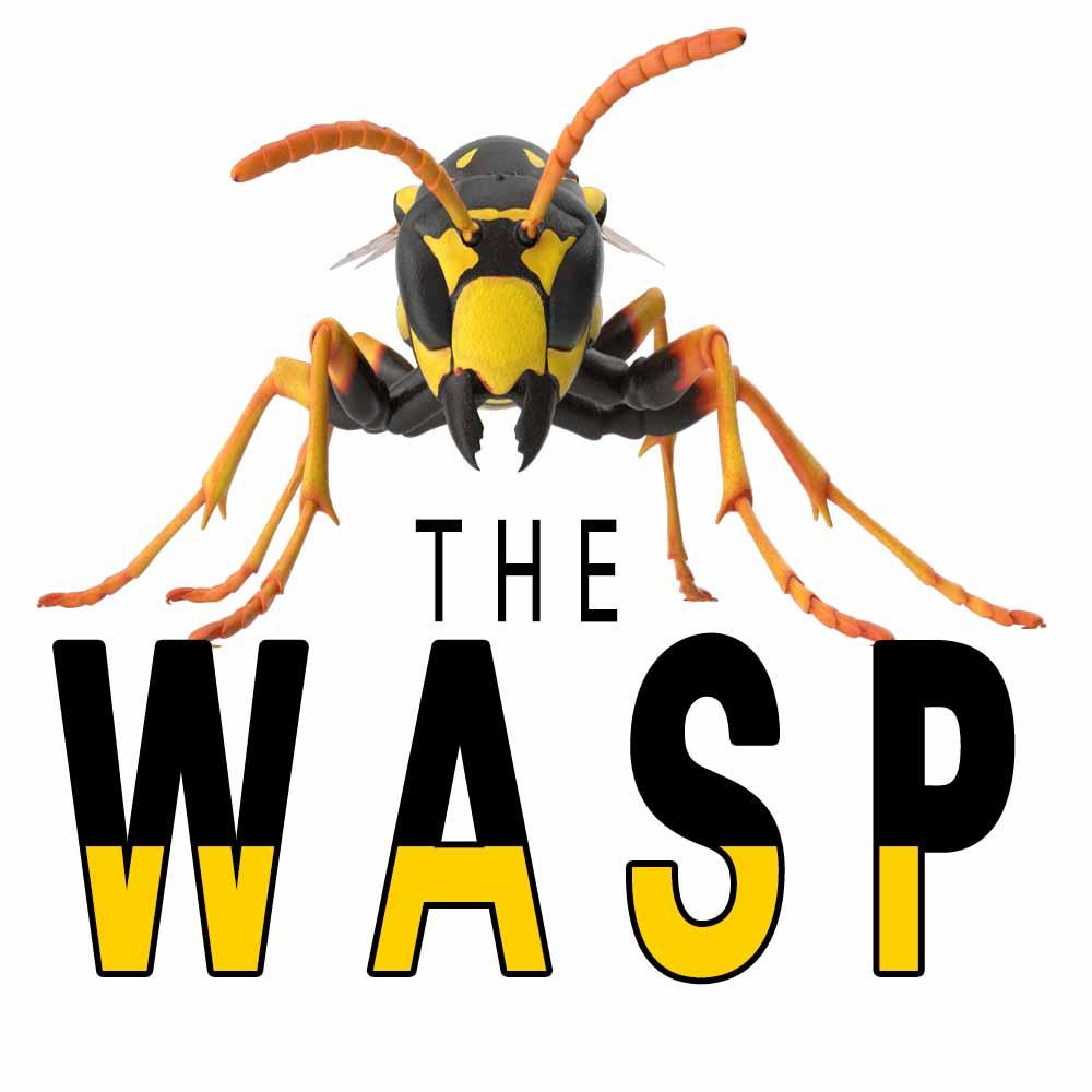 The Wasp by Morgan Lloyd Malcolm