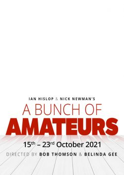 A Bunch of Amateurs by Ian Hislop & Nick Newman Poster
